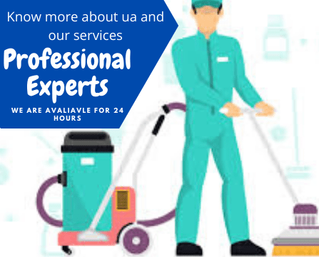 professional experts